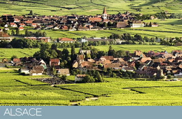 Alsace selections
