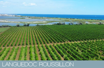 languedoc roussillon selections