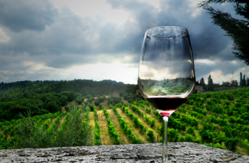 selections of wines Léna et Bradford